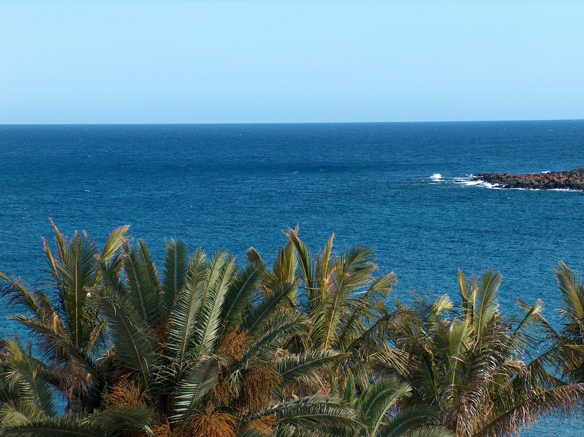 Hotel Cactus Spain